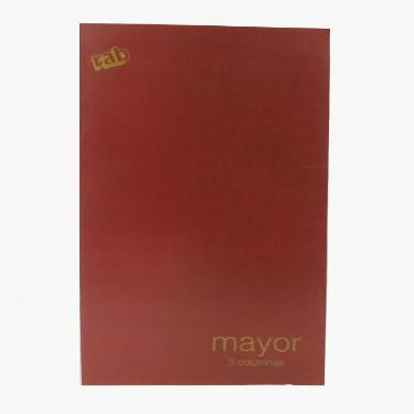 LIBRO RAB MAYOR CONTABILIDAD SERIE 2233-M3